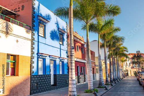 Colourful houses, palm on street Puerto de la Cruz town Tenerife Canary Islands Fototapeta