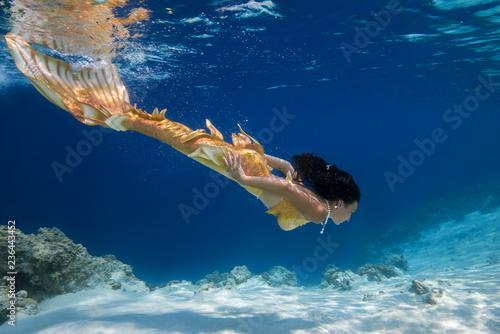 Fotografie, Obraz  Mermaid swim underwater, Indian Ocean, Maldives