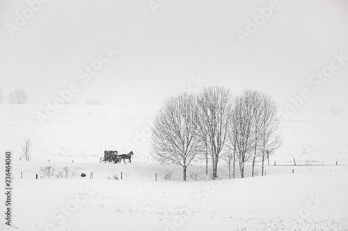 Fotografía Amish buggy travels a country road in upstate New York during a snow storm