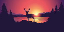 Beautiful Wildlife Landscape With Reindeer Lake Mountains And Forest At Sunset Vector Illustration EPS10