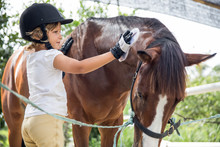 Young Girl Taking Care Of Her Horse At The Farm