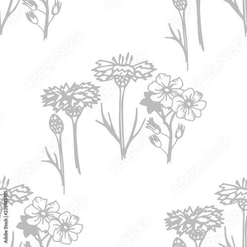 Fototapeta seamless floral pattern with wild flower obraz na płótnie