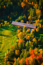 Aerial View Of Fall Foliage An...