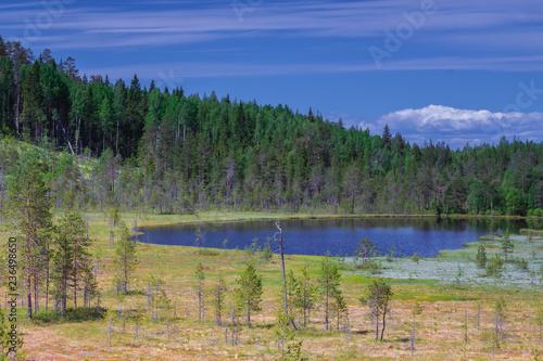 Spoed Foto op Canvas Cappuccino lake in the mountains, landscape, Khibiny mountains, Murmansk region in Russia, kola peninsula. summertime