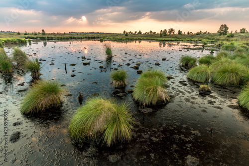 Fotografija Hautes Fagnes Moor