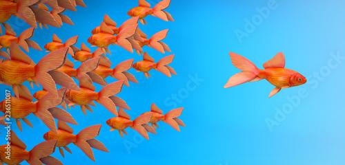 Fotografie, Obraz  Schwarm Fische - Konzept einzigartig, mutig, Neues oder allein sein