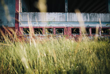 Abstract Photo Of Tall Grass Outside Abandoned Building