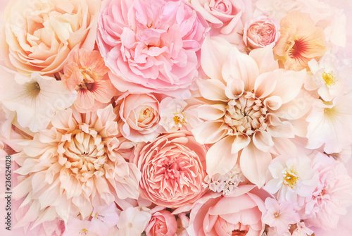 Fotografía  Summer blossoming delicate rose and dahlia blooming flowers festive background,