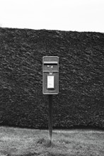 British Post Box Against A Hedgerow Shot On Black And White Film.