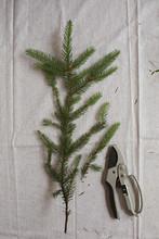 Creating A Christmas Wreath Fr...