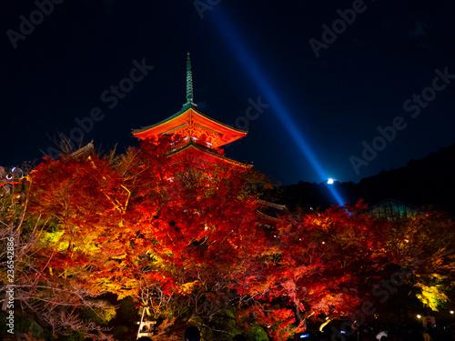 Deurstickers Asia land Kiyomizu-dera , red autumn leaves autumn light up at night, red pagoda Kyoto, Japan