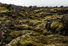 Volcanic Lava Field Covered In...