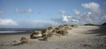 Dunes And Beach On Dutch Wadde...