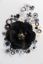 Big Black Flower With Smaller Ones Around