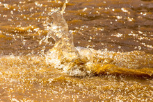 Splashes Of Dirty Water On The Surface Of The River
