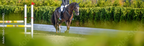 Equitation Beautiful girl on sorrel horse in jumping show, equestrian sports. Light-brown horse and girl in uniform going to jump. Horizontal web header or banner design. Copy space for your text.