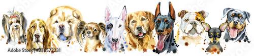 granica-z-akwarelowymi-portretami-psow-do-dekoracji