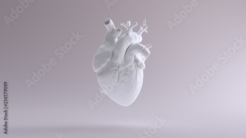 canvas print motiv - paul : White Heart Anatomical 3d illustration 3d render