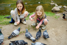 Two Cute Little Sisters Feeding Birds On Summer Day. Children Feeding Pigeons And Ducks Outdoors.
