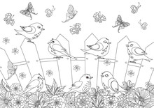 Summer Scenery With Happy Birds On Fence For Your Coloring Book