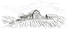 Rural Landscape Field Wheat. H...