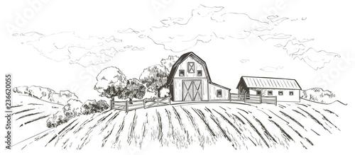 Obraz Rural landscape field wheat. Hand drawn vector Countryside landscape engraving style illustration. - fototapety do salonu