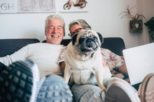 Caucasian Senior Couple Sit On The Couch With Funny Pug Dog Looking. Happiness With Love For Animals And Best Friend Concept - Home Daily Life With Nice People And Old Puppy