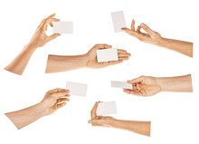 Hand Holding Card Isolated With Clipping Path