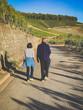 Älteres Ehepaar beim spazieren gehen in den Weinbergen im Kraichgau