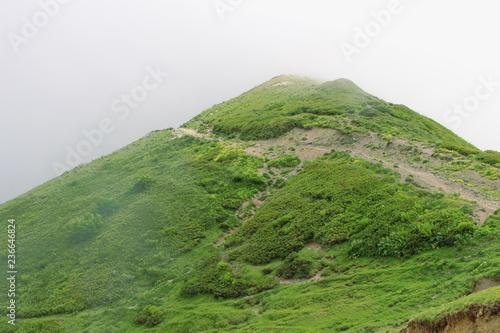 Foto auf Gartenposter Gebirge Foggy mountain