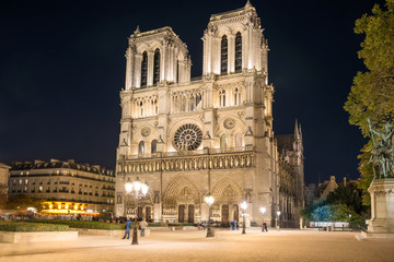 Notre Dame de Paris - famous cathedral with night illumination