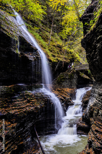 Waterfall and cascade in the Forest, New York