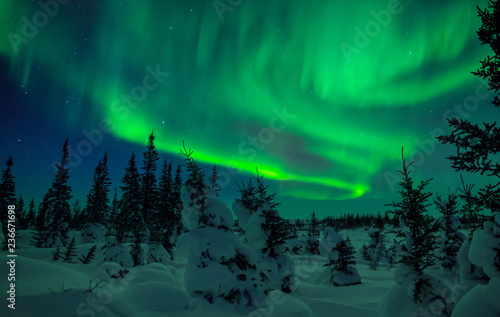 Photo sur Toile Aurore polaire Northern Lights Fill The Sky