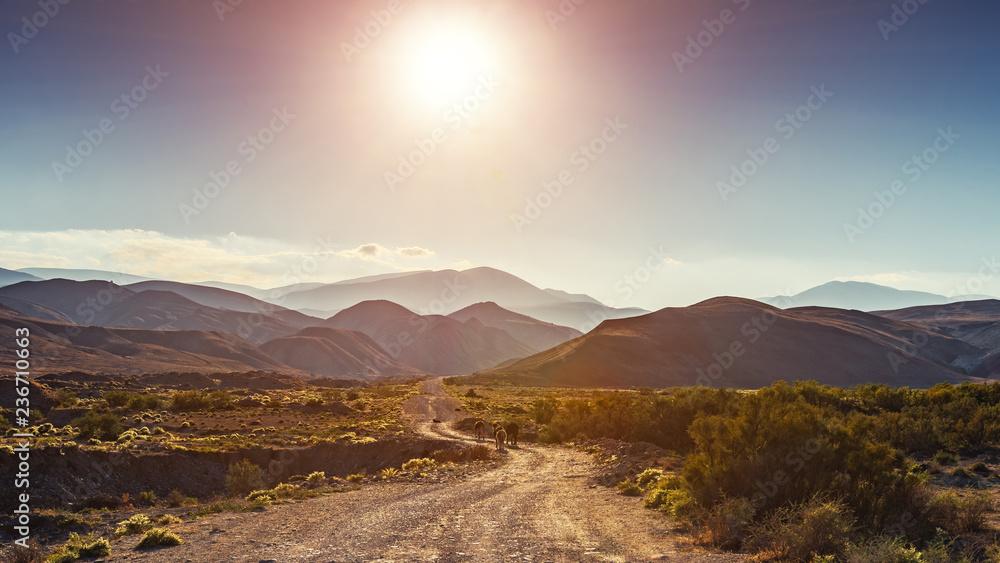 Fototapeta Dirt road to the mountains