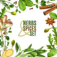 Herbs Realistic Frame