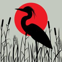 Heron Walking , Vector Illustr...