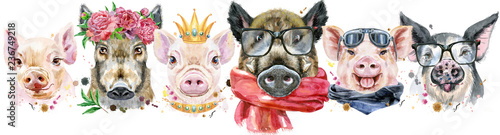 Photo sur Toile Croquis dessinés à la main des animaux Border from pigs. Watercolor portraits of pigs and boars