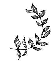 Black White Illustration Of A Branch With Leaves. Fractal Plant