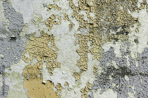 Poster Vieux mur texturé sale yellow and grey peeling paint on the old rough concrete surface