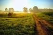 canvas print picture - Beautiful bright sunrise with an old country dirt road heading towards the sun. Raleigh North Carolina