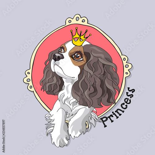 Carta da parati Cavalier King Charles Spaniel Puppy with a princess crown in a pink frame