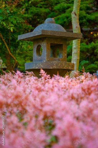 Photo  A Japanese style lantern in a beautiful garden