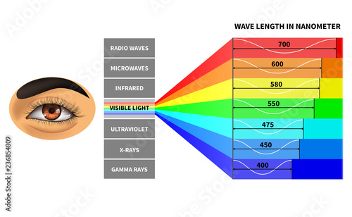 Fotomural Visible light spectrum