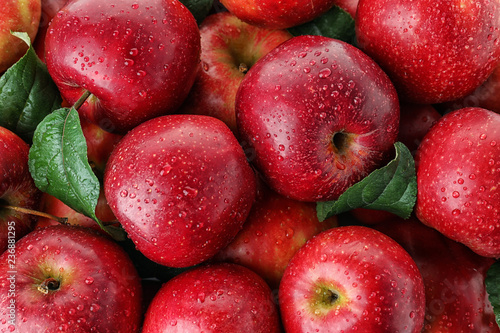 Many ripe juicy red apples covered with water drops as background Fotobehang