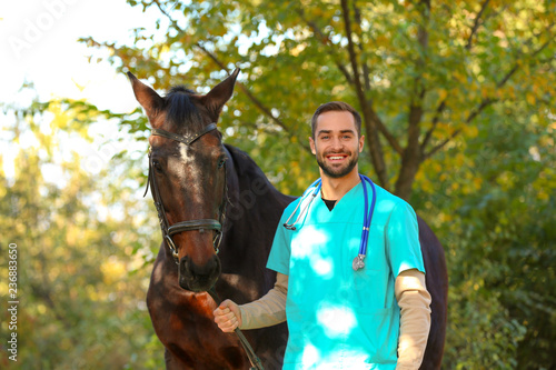 Fotografie, Tablou Veterinarian in uniform with beautiful brown horse outdoors