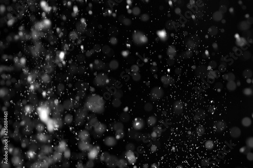 Snow flakes falling on black background. Winter weather Wallpaper Mural