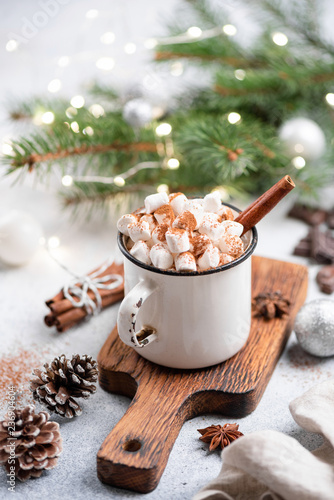 Christmas Hot Chocolate In Mug. Hot Chocolate with spices and marshmallows