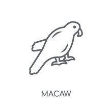 Macaw Linear Icon. Modern Outl...