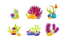 Set Of Compositions With Various Sea Algae, Corals And Stones. Aquarium Decor. Flat Vector For Mobile Game