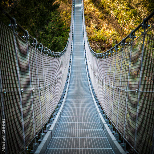 suspended bridge on alps